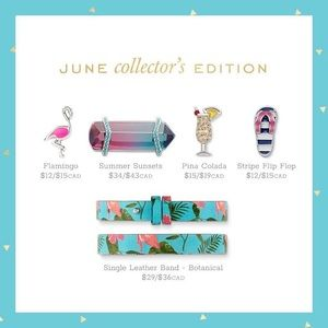 Keep Collective Flamingo Collectors Edition